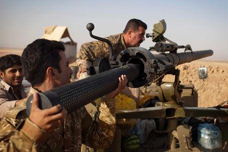 Vi sao My o at cap vu khi cho nguoi Kurd Syria? - Anh 1