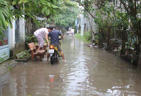 Can Tho: 'Du an Hanh Phuc', con dan thi keu kho! - Anh 1