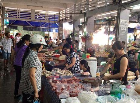 Thua Thien - Hue khong co dich lon tai xanh - Anh 1