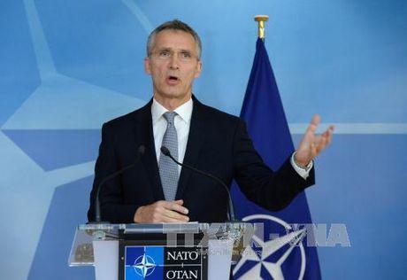 Sau dien dam Trump-Putin, NATO muon doi thoai voi Nga - Anh 1