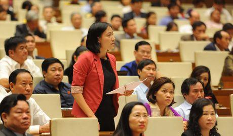 Bo truong Cong Thuong tra loi chat van 8 van de nong dai bieu va cu tri quan tam - Anh 2