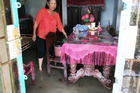 TP. Ho Chi Minh: Hang chuc ngan goc mai Tet bi ngap ung vi trieu cuong - Anh 5