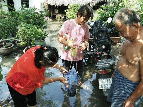 TP. Ho Chi Minh: Hang chuc ngan goc mai Tet bi ngap ung vi trieu cuong - Anh 7