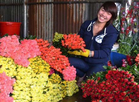 Sap 20-11: Hoa tang gia, co giao bi ep hau ruou, hoc sinh tu vong vi can cau do - Anh 2
