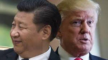 Chu tich Trung Quoc Tap Can Binh va Tong thong dac cu My Donald Trump nhat tri gap go - Anh 1