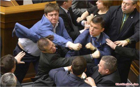 Trong khi hop Quoc hoi, nghi si Ukraine dam nhau - Anh 2