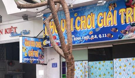 Truy bat doi tuong vao quan game ban ca dung dao khong che ong chu cuop tai san - Anh 1