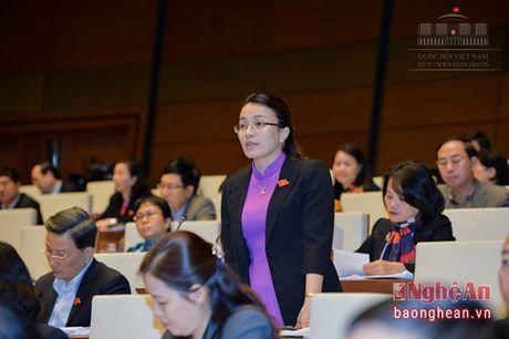 Dai bieu Hoang Thu Trang: 'Cu tri quan ngai ve chat luong hau kiem tai cac du an co nguy co ve moi truong' - Anh 1