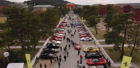 Hon 70 sieu xe tham du hanh trinh Ferrari International Cavalcade - Anh 1