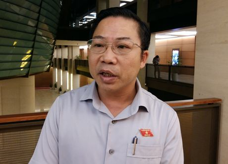 Dai bieu Luu Binh Nhuong: Cau hoi cua toi de tra loi va khong he 'soc' - Anh 1