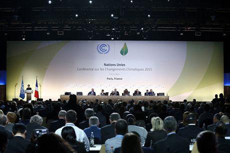 Su kien Donald Trump dac cu phu bong den len COP22 - Anh 2