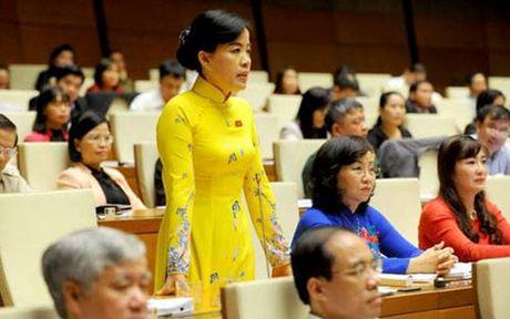 Bauxite Tay Nguyen:Phai chap hanh phap luat trong tung hang muc dau tu - Anh 1