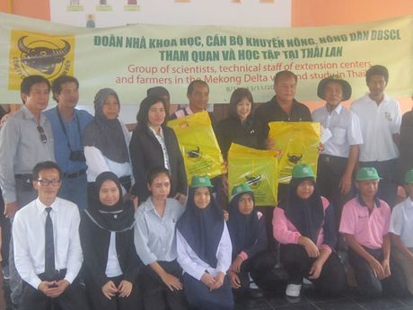 Nong dan hoc tap kinh nghiem san xuat lua tai Thai Lan - Anh 1