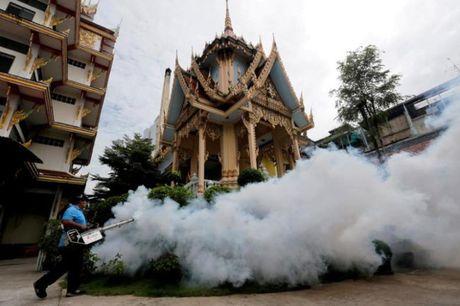 Them 33 ca nhiem Zika tai Thai Lan - Anh 1