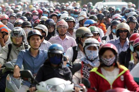 Ngan sach phan bo giam, TP HCM tinh the nao? - Anh 1