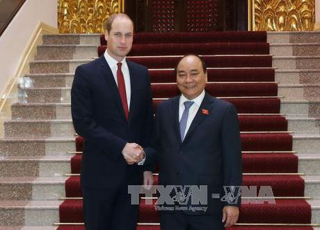 Thu tuong Nguyen Xuan Phuc tiep Hoang tu Anh William. - Anh 1