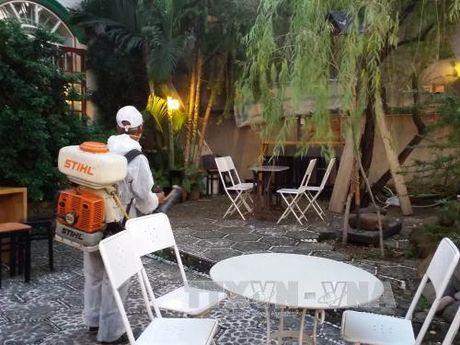 Giam sat dich benh do vi rut Zika tai TP Ho Chi Minh - Anh 1