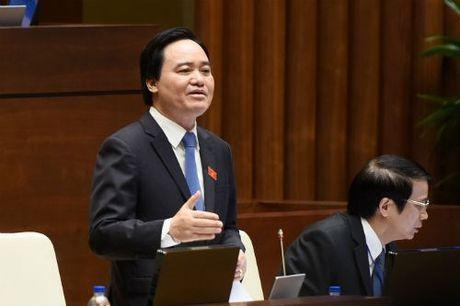 Bao luc hoc duong gia tang: Nguyen nhan ... mot phan do nganh giao duc - Anh 1