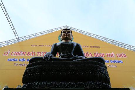 Tuong Phat Ngoc hoa binh the gioi duoc cung nghinh tai Binh Duong - Anh 1