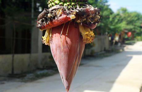 Buong chuoi 100 nai van chua dung tro hoa - Anh 3