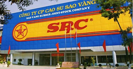 SRC: Sap chi hon 28 ty tra co tuc ty le 10% - Anh 1