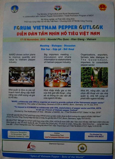 'Tam nhin Ho tieu Viet Nam' - Anh 3