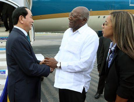 Chu tich nuoc Tran Dai Quang hoi kien Lanh tu Fidel Castro - Anh 3
