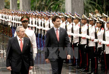 Thu tuong Canada Trudeau khang dinh quan he gan gui voi Cuba - Anh 1