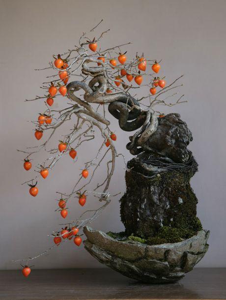 Chiem nguong chau bonsai tu cay an qua cuc doc de trung Tet - Anh 10