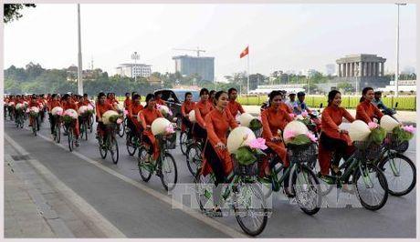Ha Noi cho thue xe dap cong cong 3.000 dong/gio - Anh 1