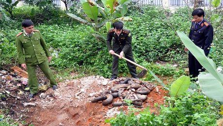 Quang Ninh: Khoi to 2 doi tuong van chuyen te te trai phep - Anh 1