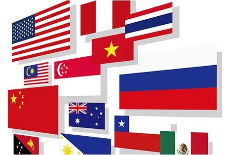Vai tro cua Viet Nam trong tien trinh hop tac APEC - Anh 1