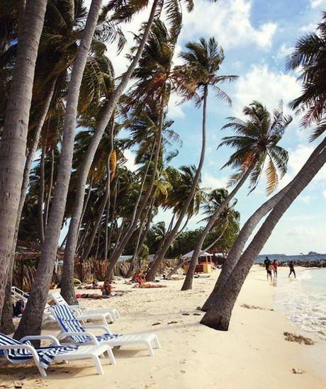 Chuyen di Maldives trong mo cua me don than ung thu va con trai - Anh 8