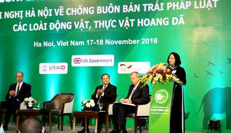 Viet Nam luon quan tam bao ve dong vat hoang da - Anh 1