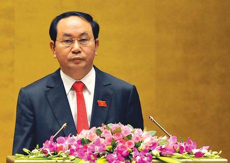Chu tich nuoc tham du Tuan le Cap cao APEC 24 - Anh 1