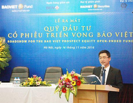 Baoviet Fund ra mat Quy Dau tu co phieu trien vong Bao Viet - Anh 1