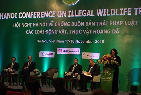 Chong buon ban trai phep dong, thuc vat hoang da: Can hanh dong cua toan cau - Anh 1