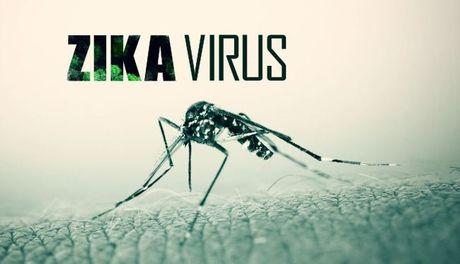 Quan Binh Thanh co 8 ca nhiem Zika nhieu nhat TP.HCM - Anh 1