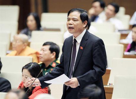 Phat huy loi the nong san thuc pham Viet Nam - Anh 1