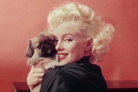 'Vuot mat' Marilyn Monroe, Cara Delevingne tro thanh bieu tuong moi - Anh 1
