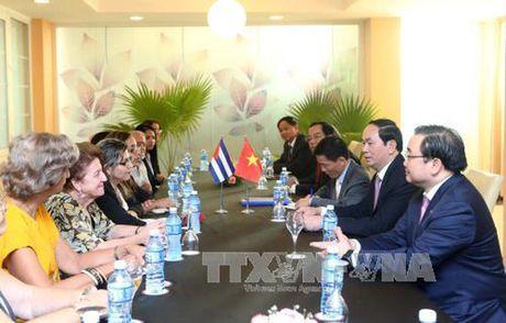 Toan canh: Chu tich nuoc Tran Dai Quang tham chinh thuc Cuba - Anh 13