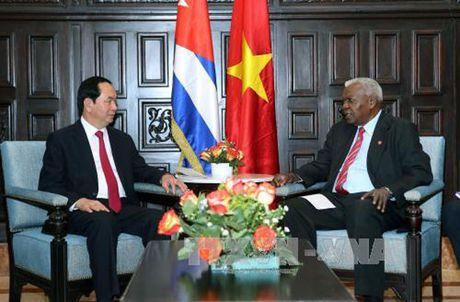 Toan canh: Chu tich nuoc Tran Dai Quang tham chinh thuc Cuba - Anh 6