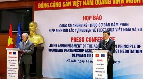 Go Viet sap co 'giay thong hanh' tien thang vao EU - Anh 1