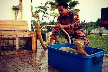 Su that ve chang trai Thai cuoi ho mang khong lo lam vo - Anh 3