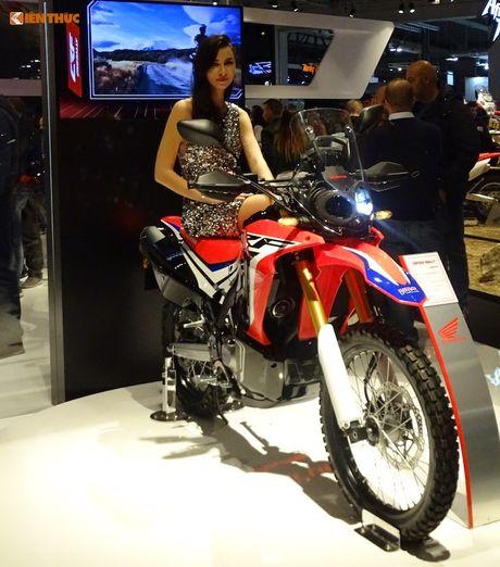 'Xe phuot' Honda CRF 250 Rally thach thuc moi dia hinh - Anh 1
