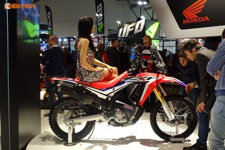 'Xe phuot' Honda CRF 250 Rally thach thuc moi dia hinh - Anh 6