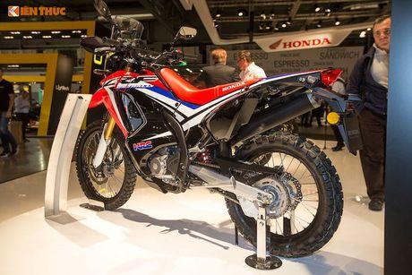 'Xe phuot' Honda CRF 250 Rally thach thuc moi dia hinh - Anh 8