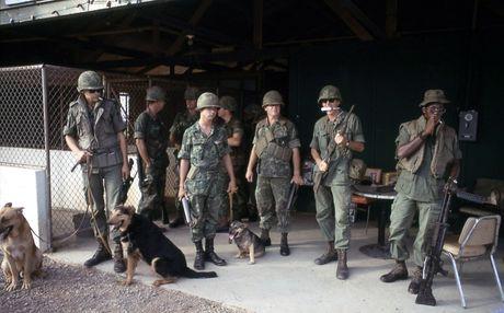 Anh hiem ve cho nghiep vu My thoi chien tranh Viet Nam - Anh 1