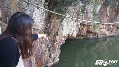 Di tim 'cha de' cua 3 con ran khong lo tren dinh nui Man - Anh 3