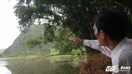 Di tim 'cha de' cua 3 con ran khong lo tren dinh nui Man - Anh 5
